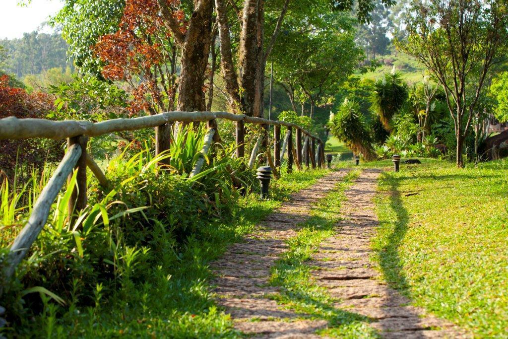 Fazenda Capoava e os benefícios da atividade física: lugares na fazenda para se exercitar